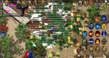我的176精品传奇里精彩游戏之旅